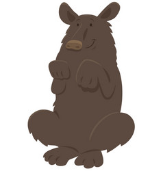 Black bear animal character vector