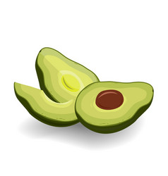 cut in half avocado on white background vector image