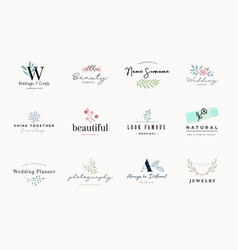 Set elegant and luxury signs for beauty vector