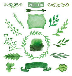 Watercolor green decor branches floral set vector