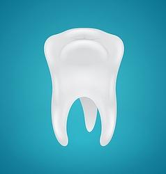 Human teeth on blue background vector image
