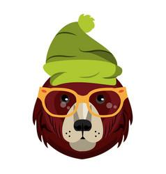 Cool hipster bear vector