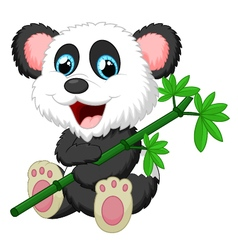 Cute panda cartoon eating bamboo vector image