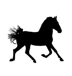Elegant racing horse in gallop portrait silhouette vector