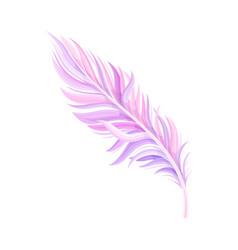 Purple bird feather with nib as avian plumage vector