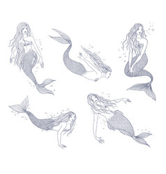 mermaid in various postures hand drawn contour vector image