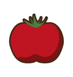 tomato vegetable icon design vector image vector image