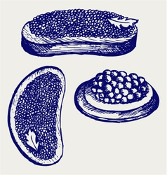 Sandwich with butter and caviar vector image