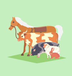 set of popular colorful farm animals pet vector image vector image