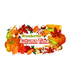 Autumn harvest poster of pumpkin corn leaf vector