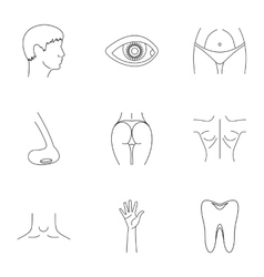 Body icons set outline style vector image