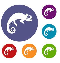 chameleon icons set vector image