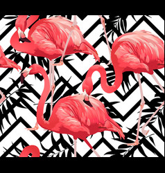 Flamingo bird and zigzag seamless pattern vector