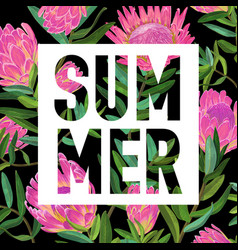 Hello summer botanical tropical design floral vector
