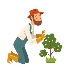 Man gardener looking in admiration at flowering vector