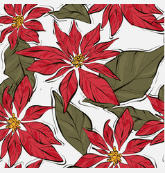 poinsettia winter flower with green leaves xmas vector image
