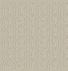 seamless pattern skin texture vector image