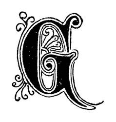 vintage drawing decorative capital letter g vector image