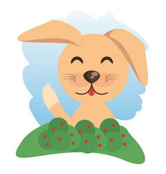 cute dog animal winking vector image vector image