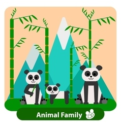Family panda on the background of bamboo and vector image