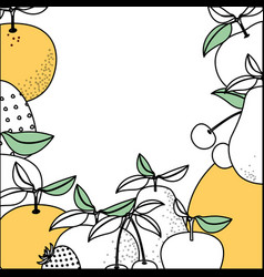 Background with color sections of tropical fruits vector