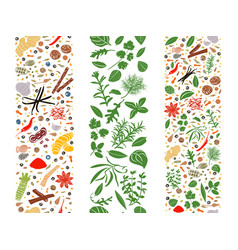 cooking flat herbs and spices organised in three vector image vector image