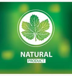 Floral logo 12 vector