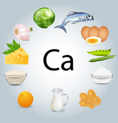 Food stuffs rich in calcium vector