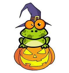 Frog With A Witch Hat In Pumpkin vector
