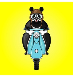 Panda racer in helmet on scooter Hand drawn in vector