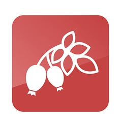 Rosehip branch with red berries outline icon vector