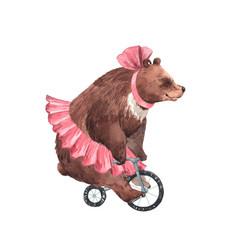 Watercolor circus bear vector