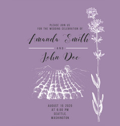 wedding invitation with lavender field vector image