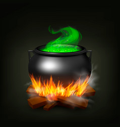Witch pot on fire vector
