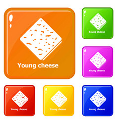 young cheese icons set color vector image