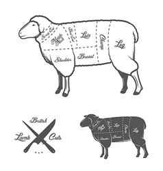 British cuts lamb or mutton diagram vector
