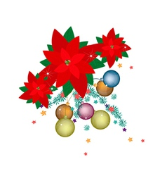 Christmas Ball and Poinsettia Flowers vector image