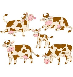 Cows Set vector image