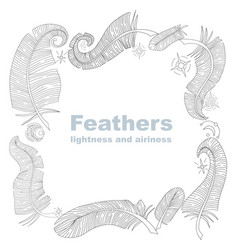 feathers frame vector image
