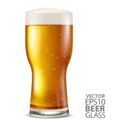 Glass beer vector image