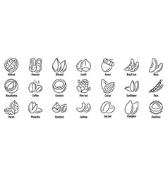 nut icon set outline style vector image