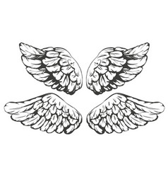 wings sketch collection cartoon vector image