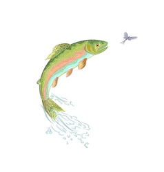 American-trout-jumps vector image