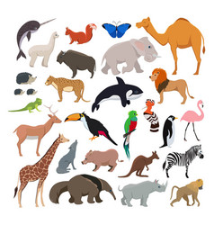 big set with wild cute animals isolate on vector image