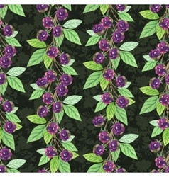 Seamless pattern with branch blackberries in vector image