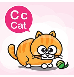C Cat color cartoon and alphabet for children to vector image
