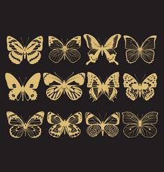 golden butterflies collection vector image vector image