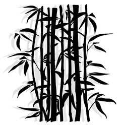 Bamboo leaf background the top of the bamboo vector