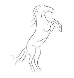 black line horse on hind legs on white background vector image