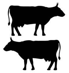 Cow icon black color set flat vector